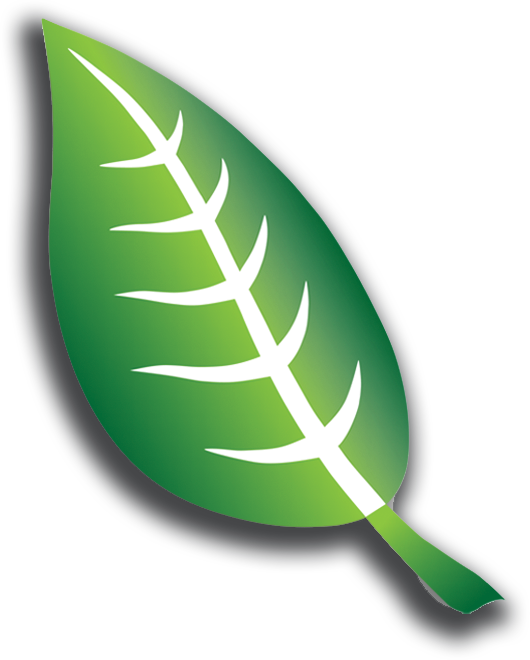 AFMTE Leaf