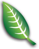 AFMTE-leaf-only